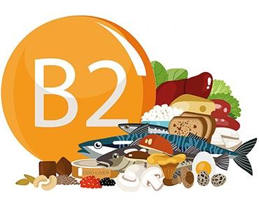 Surdosage en vitamine B2 (Riboflavine), toxicité, effets secondaires